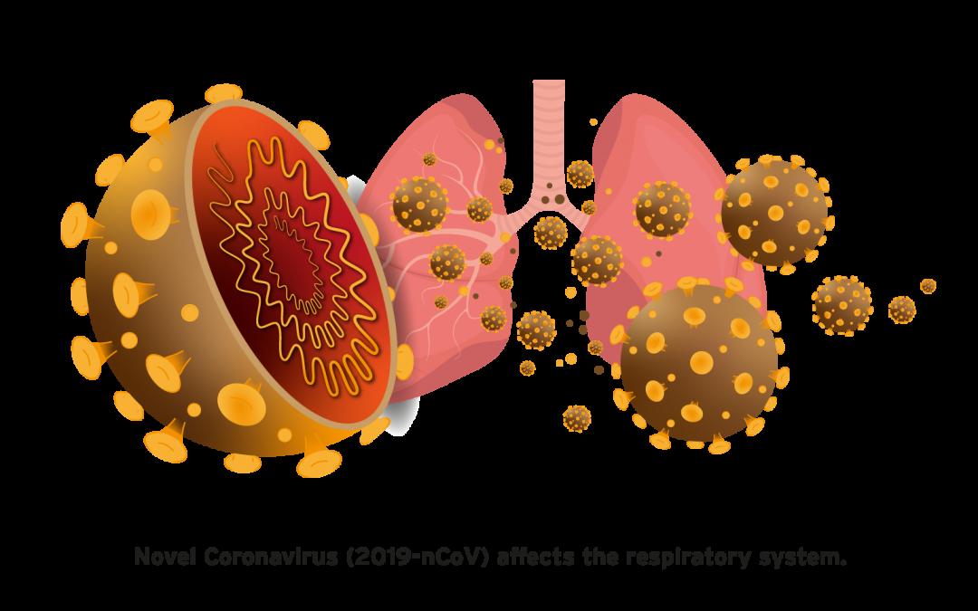 Understanding Coronavirus